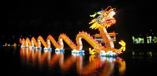 China light rotterdam for De lantaarn rotterdam