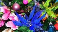 De kerstgedachte zegt dat we tijdens de kerstdagen aan de ander willen denken. Over de hele wereld doen we dit massaal door het sturen van een kerstkaart met de beste […]